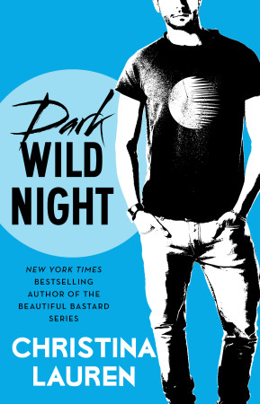 Dark Wild Night book cover